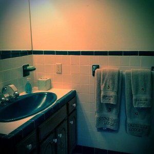 Bathroom to maser suite with numbered towels for your convenience.